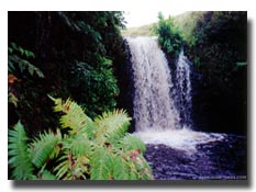 Description: Waimea Waterfall